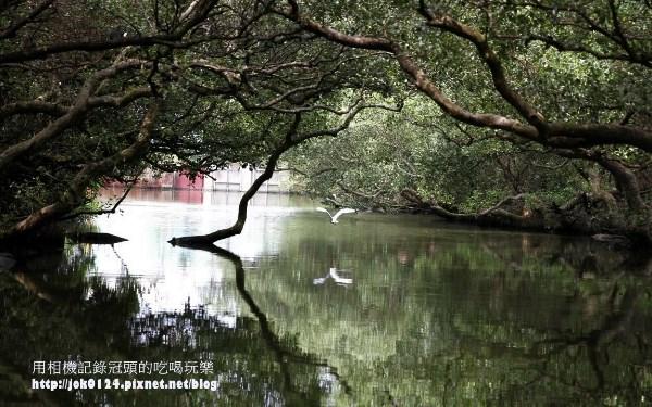 台江生態文化園區