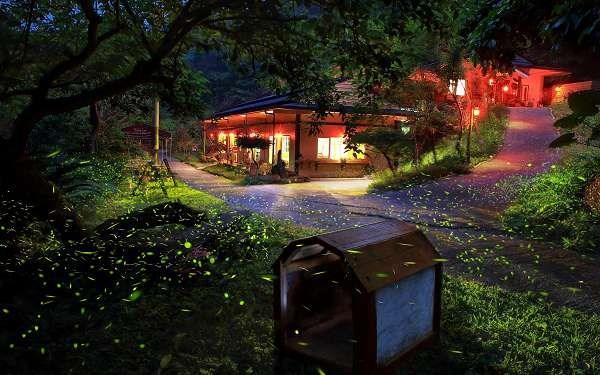 岩川森林民宿莊園餐廳