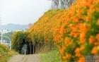 銅鑼環保公園